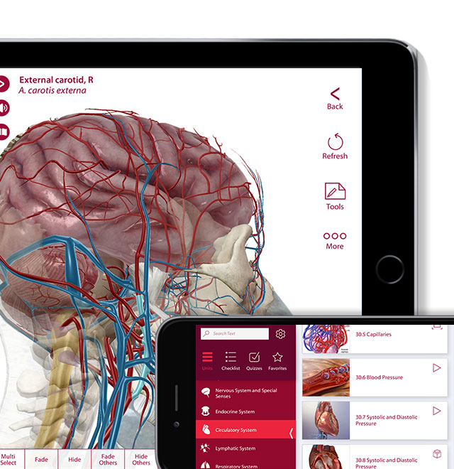 Anatomy and Physiology in multiple devices